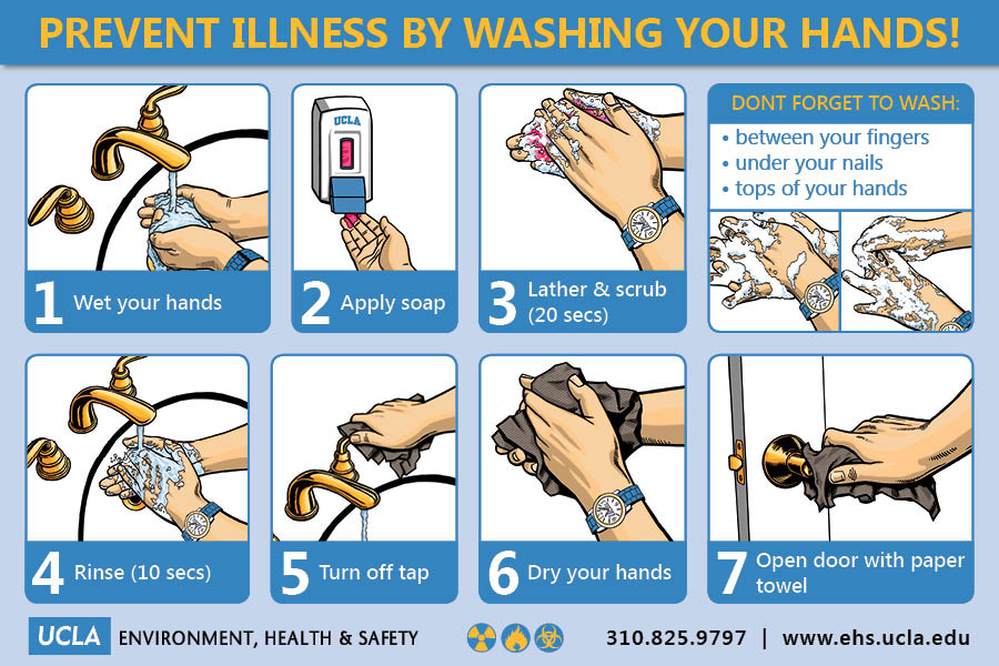 Washing your hands is the single most effective way to prevent transmission of the flu virus.